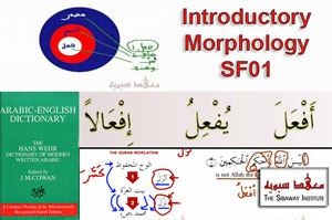 Introductory Arabic Morphology